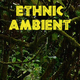 Ethnic Ambient - AudioJungle Item for Sale