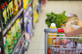 woman buy products with her trolley at supermarket - PhotoDune Item for Sale