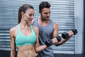 Muscular couple lifting dumbbells at the crossfit gym - PhotoDune Item for Sale