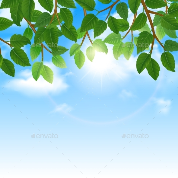 Green Leaves and Sky Background Border - Landscapes Nature