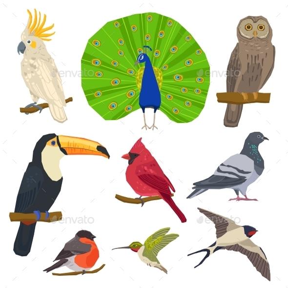Bird Drawn Icon Set  - Animals Characters