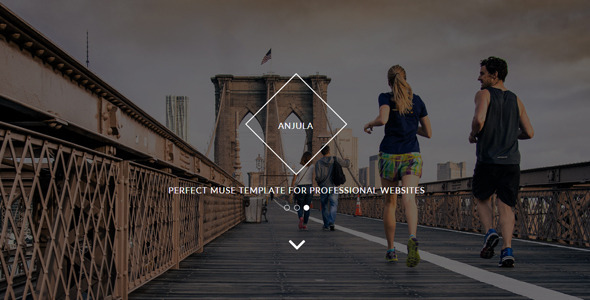 Anjula - Multi-purpose Muse Template