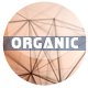 Organic Titles Opener - VideoHive Item for Sale