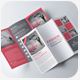 Tri Fold Business Brochure Bundle - GraphicRiver Item for Sale