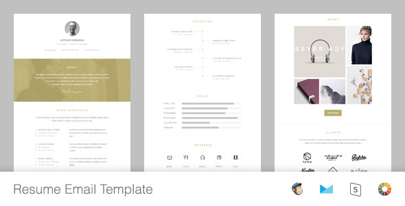 resume responsive email template editor by