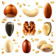 Nuts Icons - GraphicRiver Item for Sale
