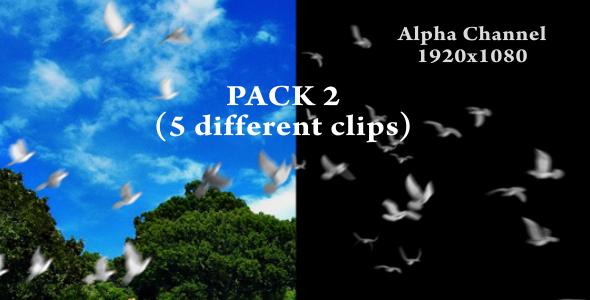 Chim Bồ câu -  Flying doves (pack Vol.2) 148157
