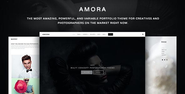 Amora – Creative Responsive Multi-Concept Theme