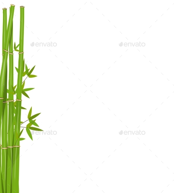 Colorful Stems and Bamboo Leaves - Backgrounds Decorative