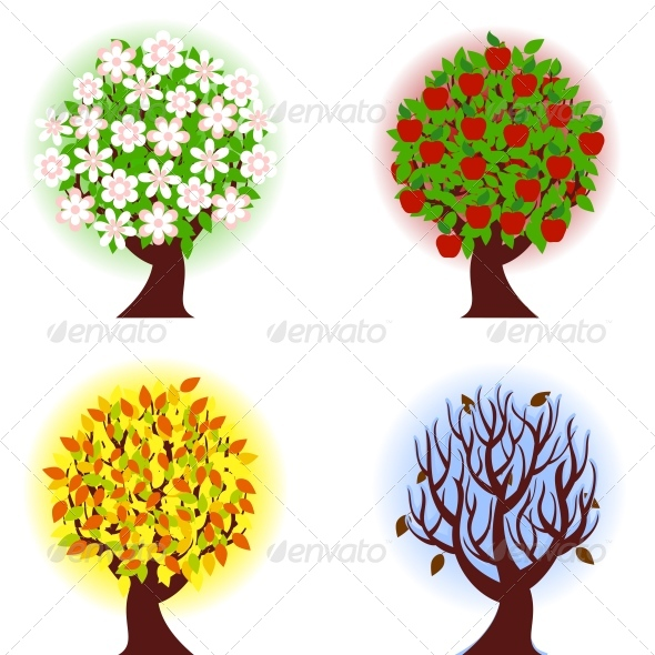 Four seasons of apple  tree. - Seasons/Holidays Conceptual