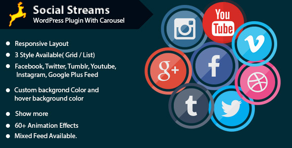 Social Stream for WordPress With Carousel - CodeCanyon Item for Sale