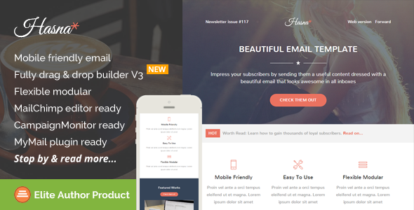 Hasna, Beautiful Email Template + Builder Access - Newsletters Email Templates