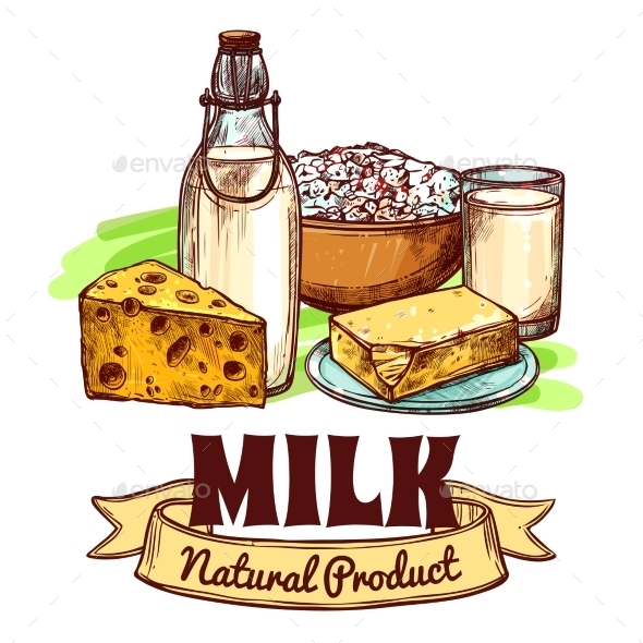 Milk Product Sketch Concept - Food Objects