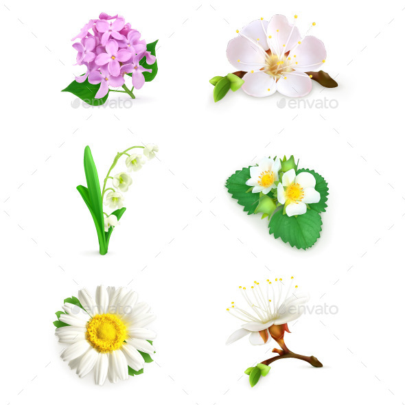 Spring Flowers Illustration - Flowers & Plants Nature