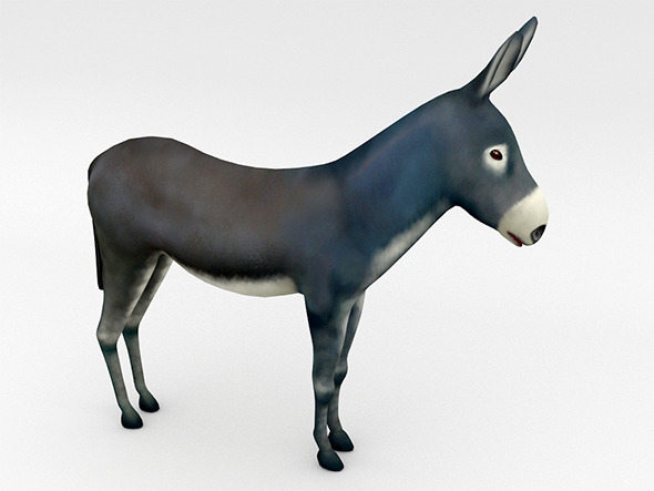 Donkey - 3DOcean Item for Sale