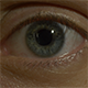 Human Eye (3in1) - VideoHive Item for Sale