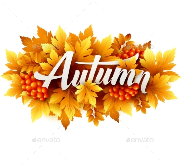 Autumn Typographic. Fall Leaf. Vector Illustration - Seasons Nature