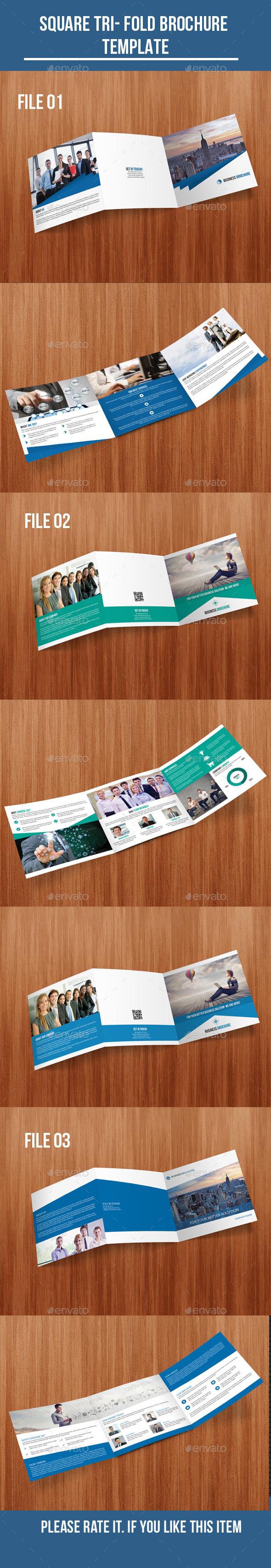 Square Tri- Fold Brochure Bundle - Corporate Brochures