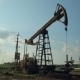 Working Oil Pumps - VideoHive Item for Sale