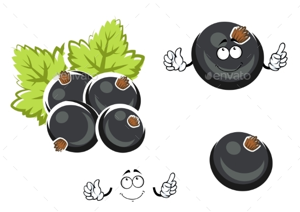 Black Currant Berry Cartoon Character - Food Objects