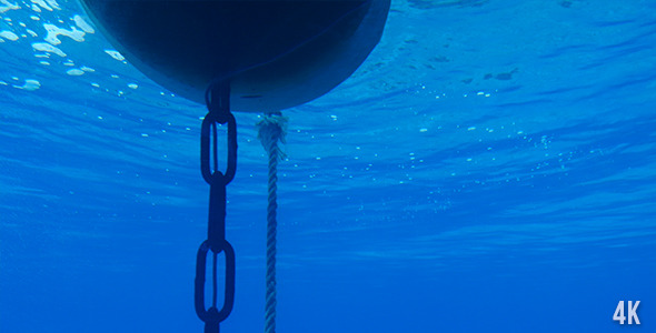 Buoy Cable And Chain Under Water