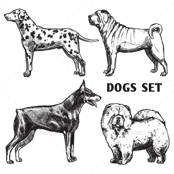 Sketch Dogs Portrait Set - Animals Characters