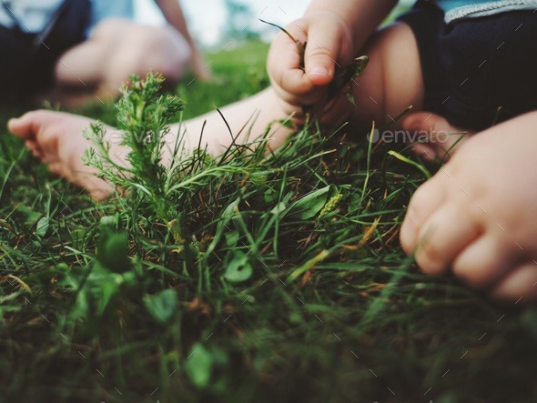 toddlers hands feeling grass - Stock Photo - Images