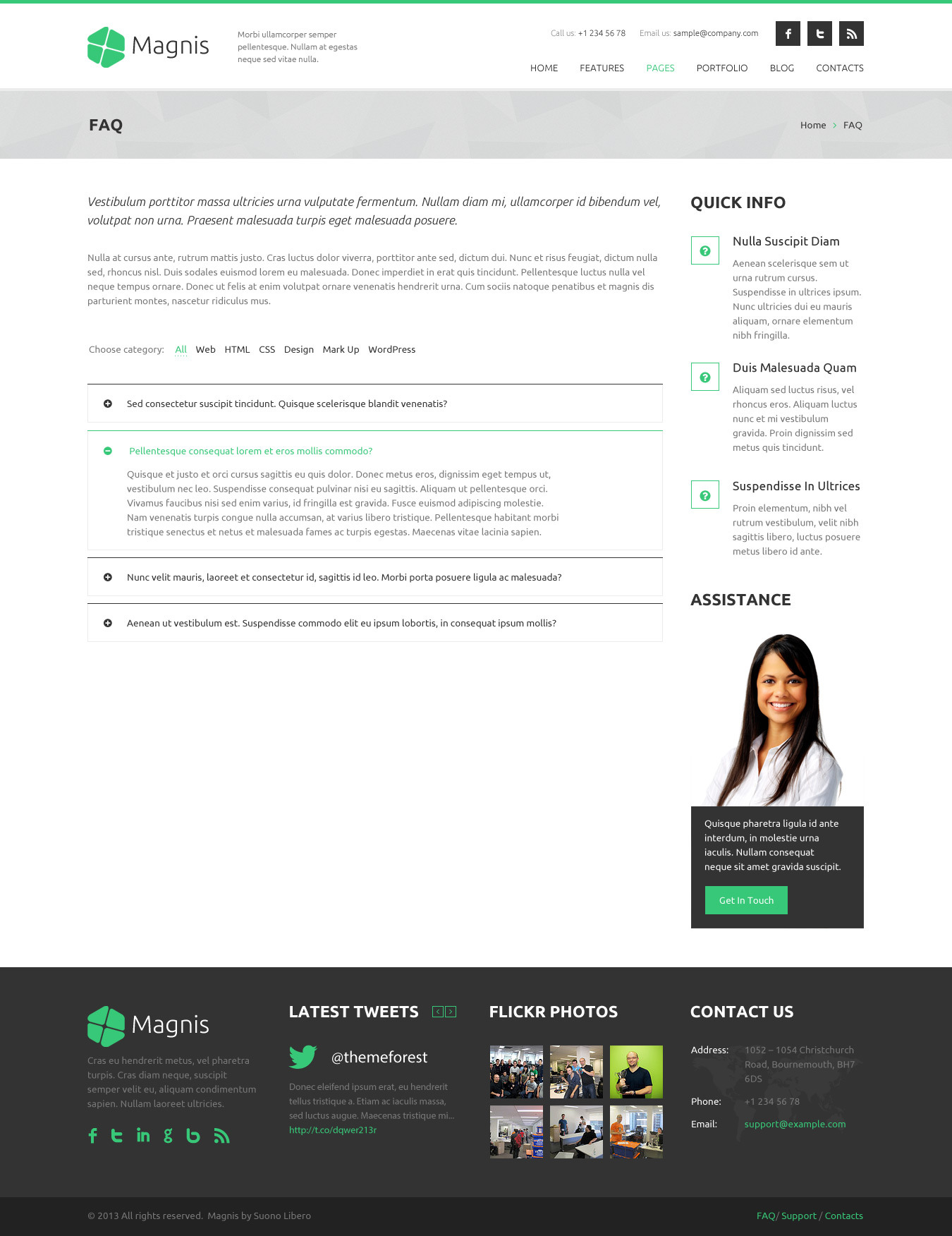 Magnis - Multipurpose HTML Template by RivaThemes   ThemeForest