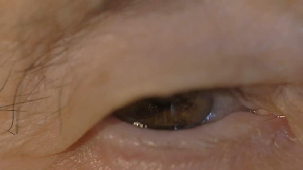 Brown Eye Of a Senior Woman