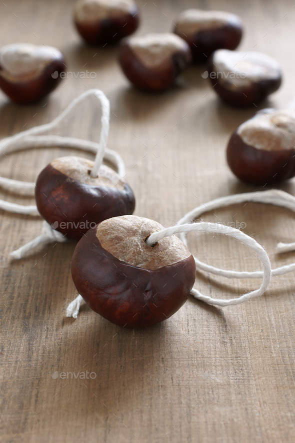 Conkers Game - Stock Photo - Images