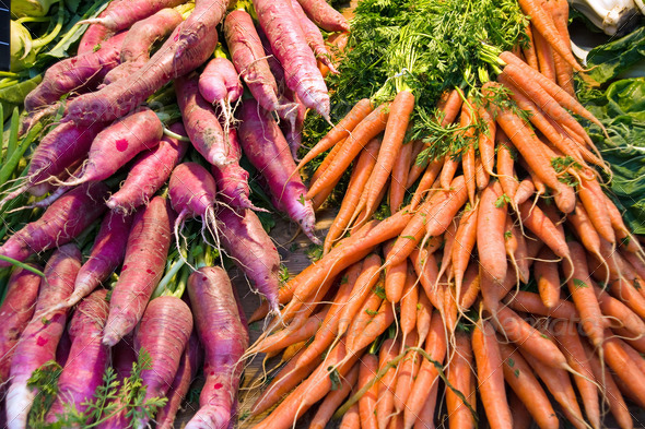 Radish and Carrots - Stock Photo - Images