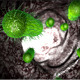 Bacteria Attack - VideoHive Item for Sale