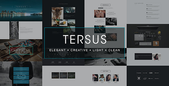 Tersus – Business Portfolio Parallax Muse Template