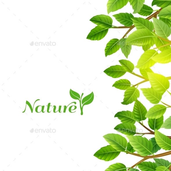 Green Leaves Nature Background Print - Nature Conceptual