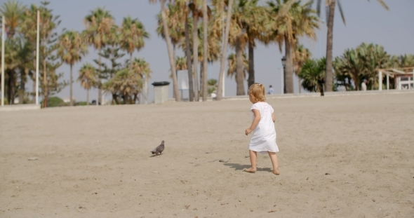 Little Girl Chasing a Seagull