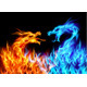 Blue and Red Fire Dragons - GraphicRiver Item for Sale