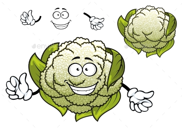 Fresh Isolated Cartoon Cauliflower Vegetable  - Food Objects