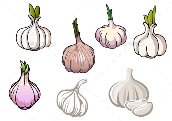 Set Of Isolated Garlic Vegetables - Food Objects