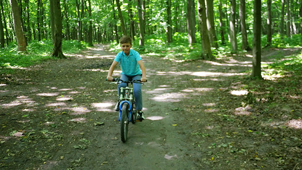 Boy Biking On Forest Trails In Day
