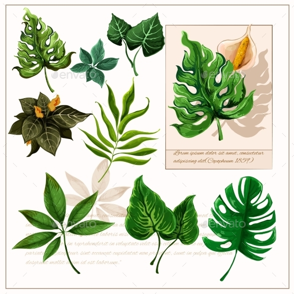 Green Tropical Leaves Pictograms Set - Nature Conceptual