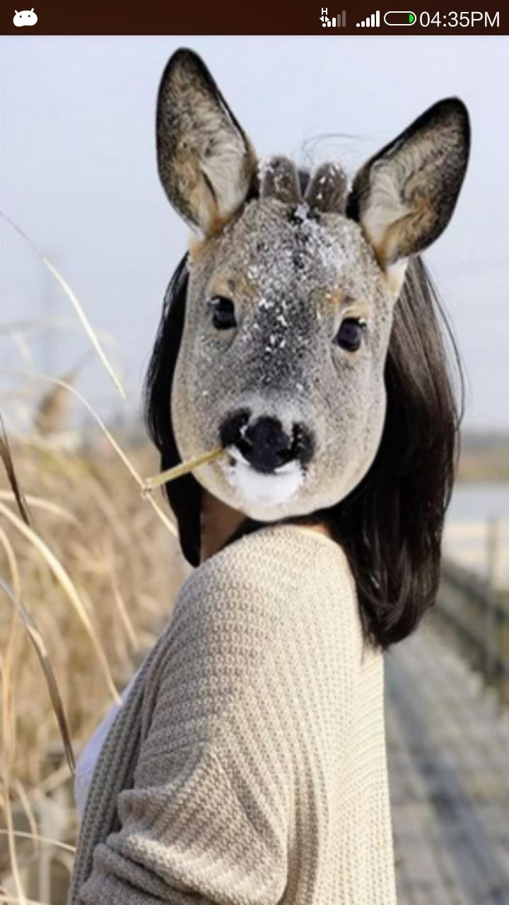 Animal Face Changer
