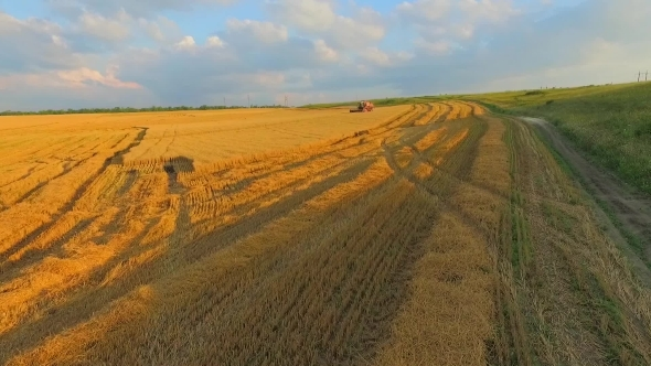 AERIAL VIEW Combine Harvester Working In The
