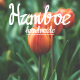 HAMBOE - GraphicRiver Item for Sale