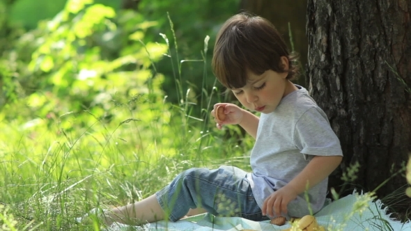 Little Boy Eats In Nature