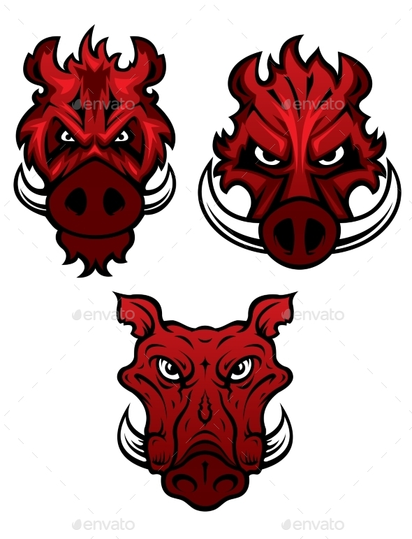 Wild Boars With Sharp Tusks - Animals Characters