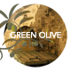 Green Olive–Stylish Blog and Portfolio - ThemeForest Item for Sale