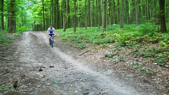 Boy Biking On Forest Trails
