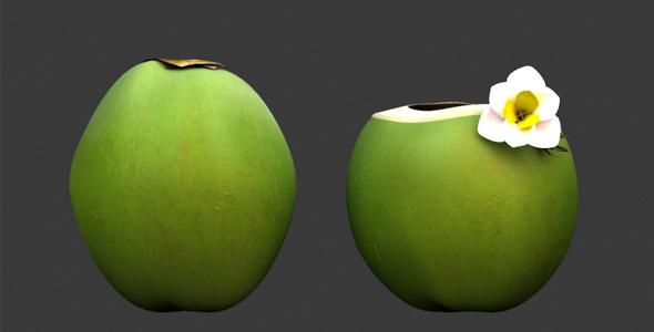 3D Model- Coconut - 3DOcean Item for Sale