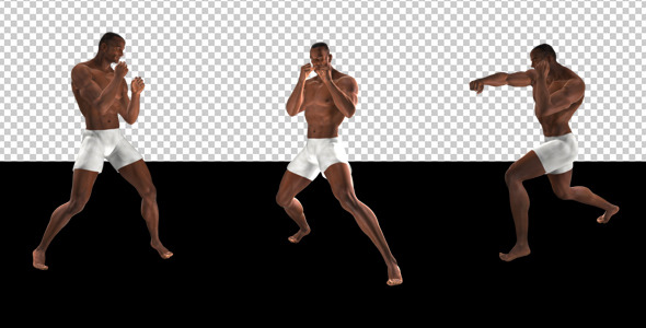 Fight Club Boxing Black Male Pack of 6