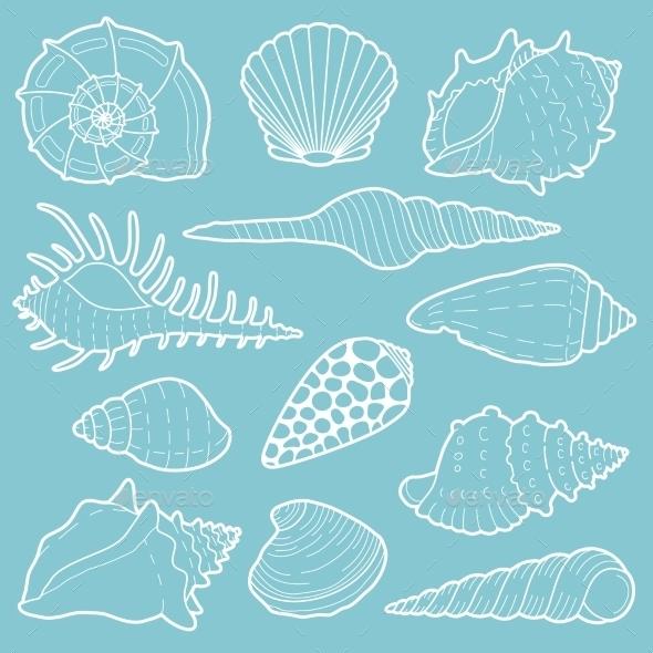 White Sea Shells Vector Icon Set - Nature Conceptual